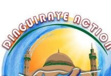 Logo de Dinguiraye Action