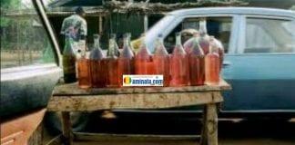 De l'essence vendue au marché noir