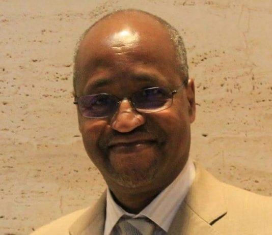 Amadou Oury Diallo, Consultant International en Développement Rural