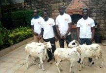 Des gagnants de moutons dans la promo Orange Tabaski