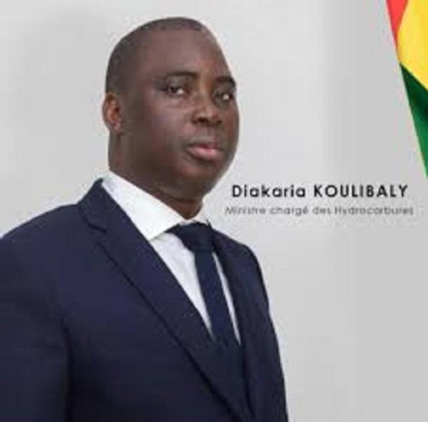 Diakaria Koulibaly, ministre des hydrocarbures